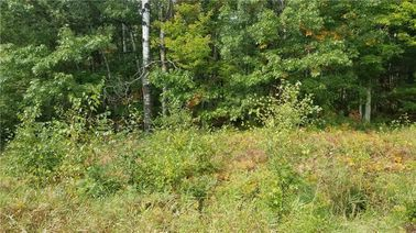 Lot 0 Tranus Lake Road