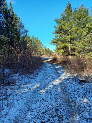 181 Acres BELL ROAD