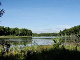 2.99 Acres Armstrong Creek Ct