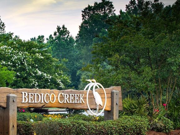 Bedico Trail Lane - Photo 1 of 16