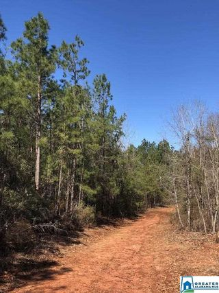 COUNTY ROAD 39 UnitSummerfield North Tract