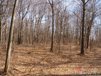 34 Woodlands Trail - Photo 1 of 1