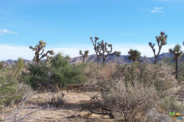 Singles in yucca valley ca
