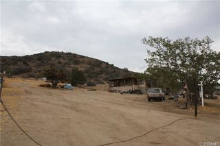 33446 Angeles Forest