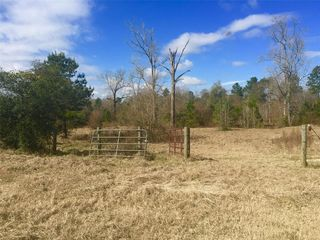 275 County Road 353