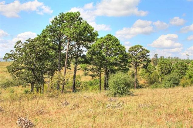 Tbd Tract 9 Gotier Trace Rd - Photo 1 of 29