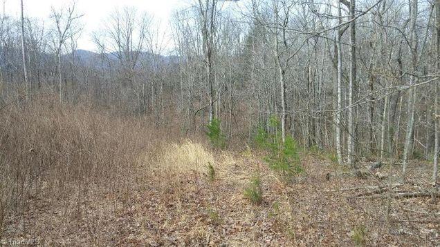 000 Lumber Plant Road - Photo 1 of 1