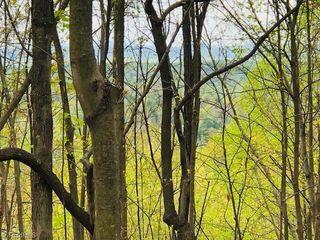 2215 Bear Trail UnitBear Trail