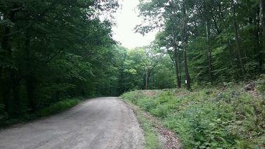 Tuttle Hill