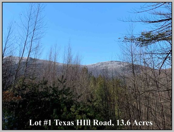 Lot #1 Texas Hill - Photo 1 of 17