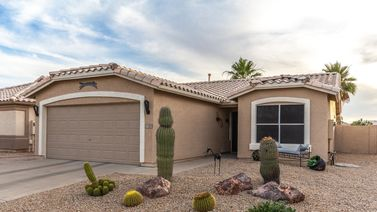 11551 W CORAL SNAKE Court