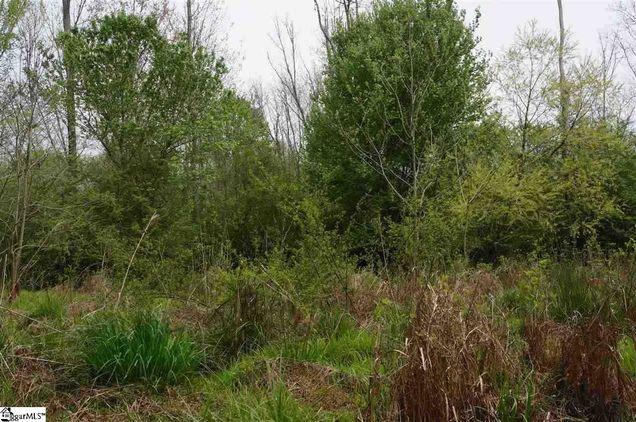 515 Cove Creek Way - Photo 1 of 1