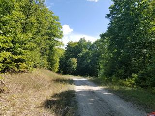 0 Timber Wood Trail