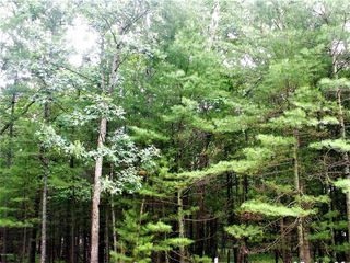 Lot 40 Meadow Wood Dr