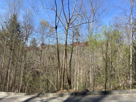 Lot #71 Smoky Ridge Way - Photo 1 of 12