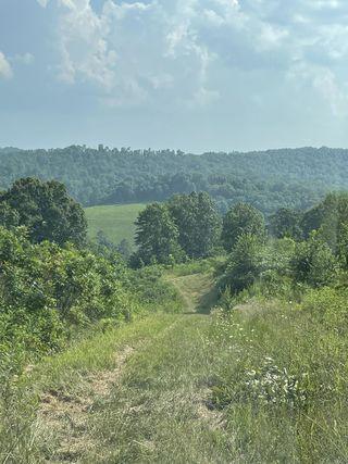 Tolliver Ridge