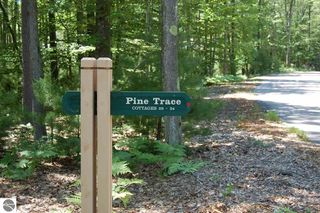 30 Pine Trace