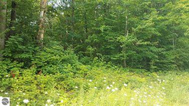 Lot 21 Acorn Ridge Trail