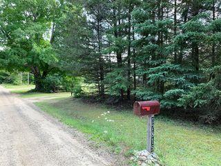 17815 Old Logging Road