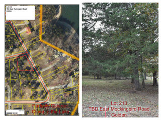 Tbd East Mockingbird, Lot 213 Road