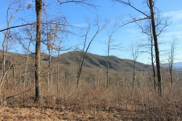 Tract A Narrow Passage RD - Photo 1 of 11