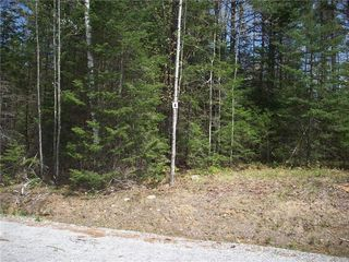 Lot 4 Songo Woods