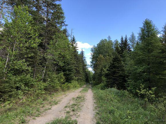 9999 Tangle Ridge Road - Photo 0 of 4