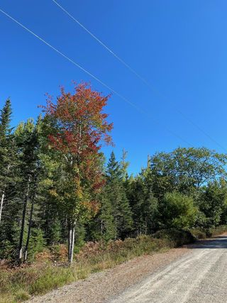 Lot 7 Bluff Road