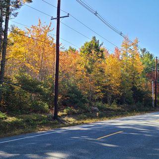 000 Blue Hill Road