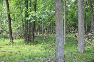 25 Ac County Road A