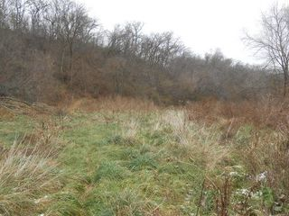 32.34 Ac Morovits Hollow Rd